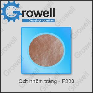 Oxit nhôm trắng - F220